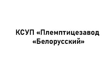 КСУП «Племптицезавод «Белорусский». Город Заславль